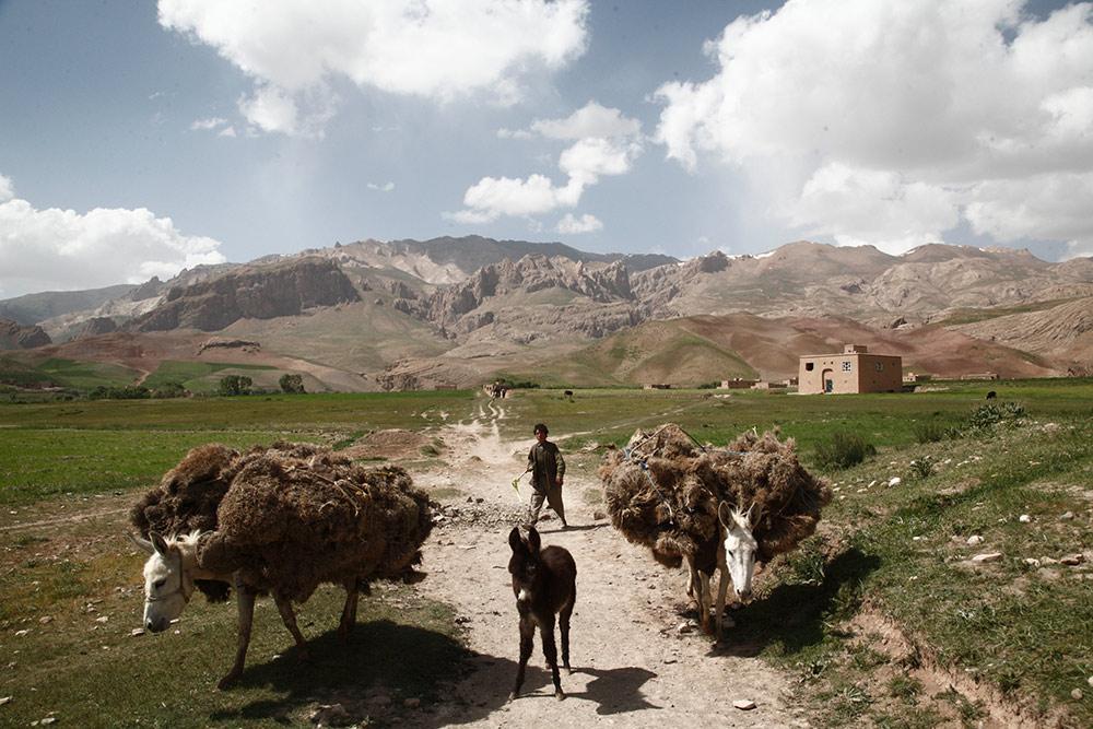 Hazarajat-